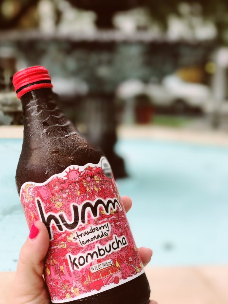 Get your probiotics with Humm Kombucha in Tampa | The Champagne Supernova